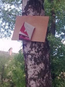 Рекламные таблички на деревьях